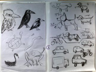 quick reference sketches for drawing birds, cats, dogs, frogs, transportation