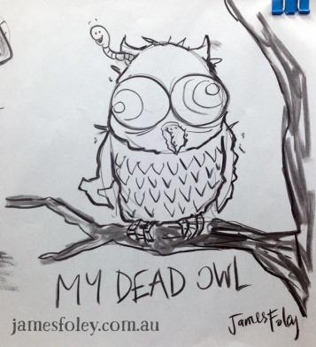 my dead owl